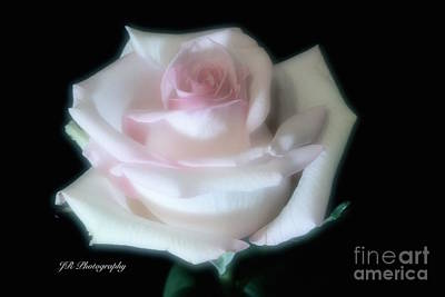 Soft Pink Rose Bud Art Print by Jeannie Rhode