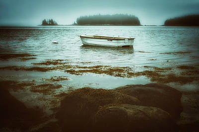 Photograph - Solitude In Maine by Jillian Schleger