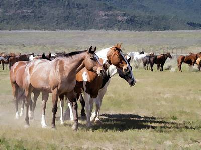 Digital Art - Sombrero Ranch Horse Drive, An Annual Event In Maybell, Colorado by Nadja Rider