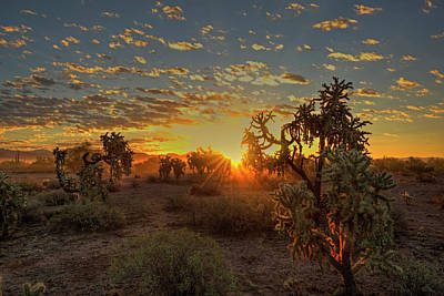 Photograph - Sonoran Sunrise by Sue Cullumber