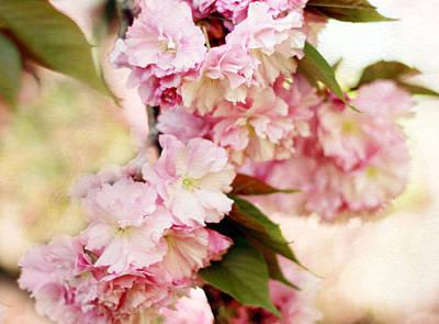 Soft Digital Art - Spring Cherry   by Jessica Jenney