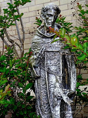 Photograph - St.francis Of Assisi by Ed Weidman