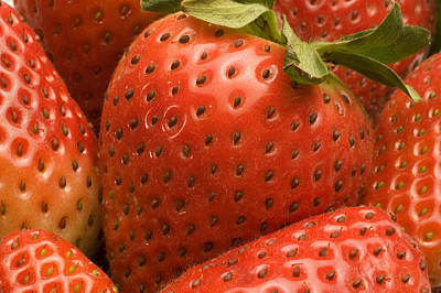 Photograph - Strawberries by Douglas Pulsipher