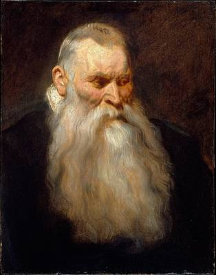 Old Man With Beard Painting - Study Head Of An Old Man With A White Beard by Anthony van Dyck