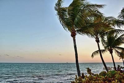 Photograph - Florida Breezes by JAMART Photography
