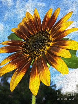 Mixed Media - Summer Sunflower  by Paul Wilford