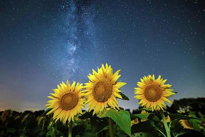 Sunflower Galaxy Print by Ryan Heffron