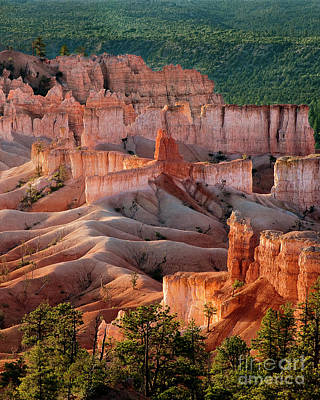 Photograph - Sunrise At Bryce Canyon National Park Utah by Dave Welling