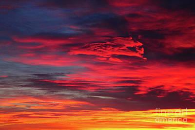 Photograph - Sunrise High Detail by Donna Munro