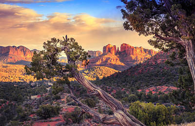 Cathedral Rock Photograph - Sunset At Cathedral Rock by Alexey Stiop