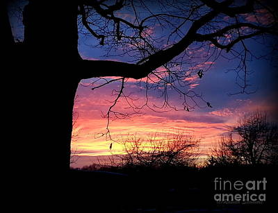 Photograph - Sunset by Rabiah Seminole