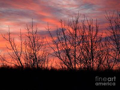 Photograph - Sunset by Raymond Earley