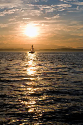 Sunset Sail Art Print by Tom Dowd