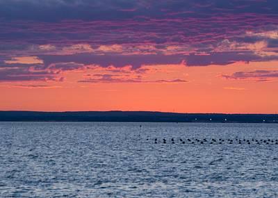 Lovely Lavender - Sunset by Steven Natanson