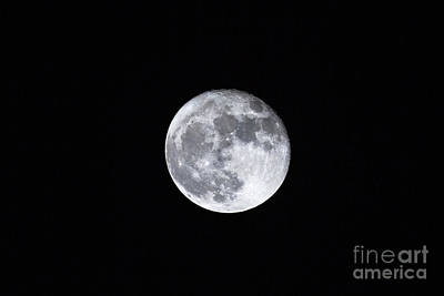 Photograph - Super Full Moon by Benny Marty