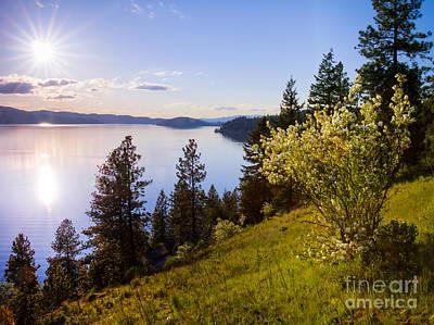 Photograph - Syringa Sun by Idaho Scenic Images Linda Lantzy