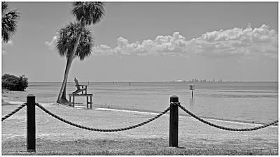 Photograph - Tampa Bay by Carol  Bradley