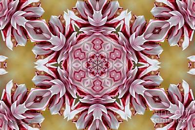 Digital Art - Tartan Mandala by J McCombie