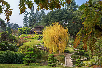 The Beautiful Fall Colors Of The Japanese Gardens In The Hunting Print by Jamie Pham