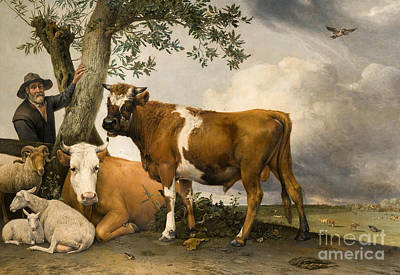 Bucolic Scenes Painting - The Bull by Paulus Potter