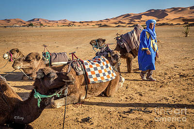 Photograph - The Camel Driver And His Camels by Rene Triay Photography