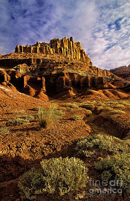 Photograph - The Castle Capitol Reef National Park Utah by Dave Welling