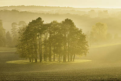 Autumn Landscape Photograph - The Downs by Ian Hufton