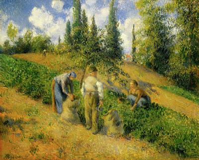 The Harvest, Pontoise Art Print by Camille Pissarro