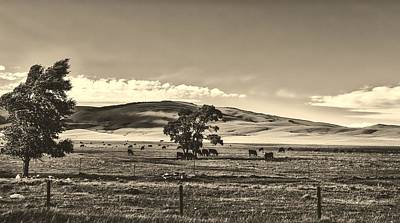 Photograph - The Laramie Plain by L O C