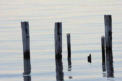 Photograph - The Posts In Still Water by Tony Brown