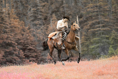 Photograph - The Rider by Steve McKinzie