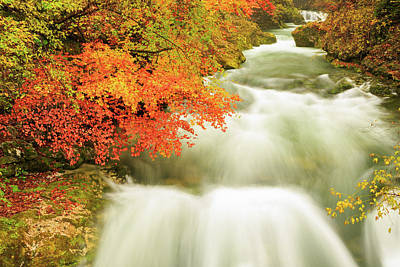 Photograph - The Soteska Vintgar Gorge In Autumn by Ian Middleton