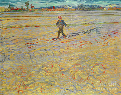 Painting - The Sower, 1888  by Vincent Van Gogh