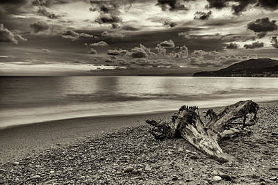 Genoa Photograph - The Trunk by Claudio Bergero
