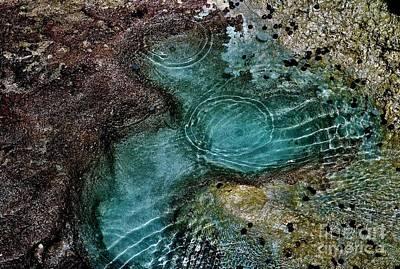 Photograph - Tide Pool by Craig Wood