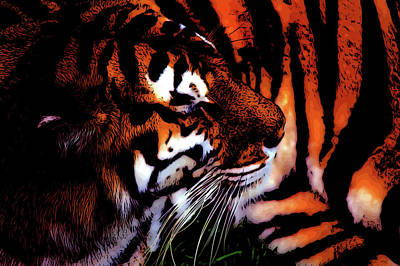 Painting - Tiger by Andre Faubert