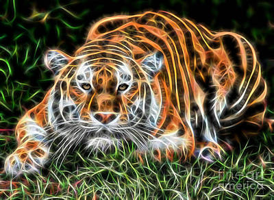 Lion Mixed Media - Tiger Collection by Marvin Blaine
