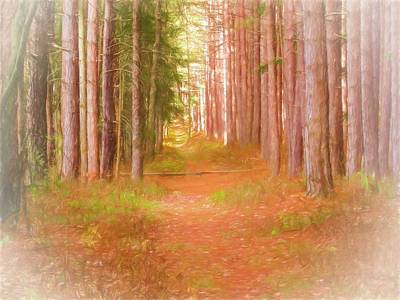 Digital Art - Trail Thru The Pines by Rusty R Smith