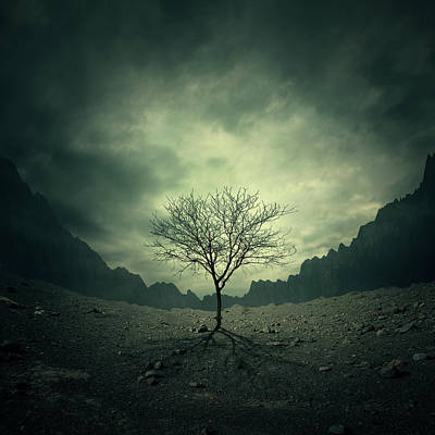 Fog Mist Digital Art - Tree by Zoltan Toth