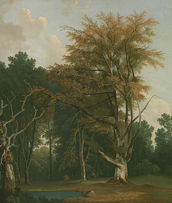 Painting - Trees In A Woodland Glade by Joseph Farington