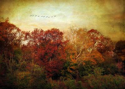 Treetops Art Print by Jessica Jenney