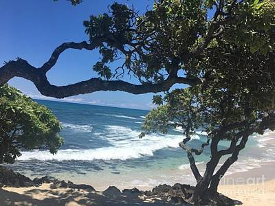 Photograph - Tropical Paradise by Karen Nicholson