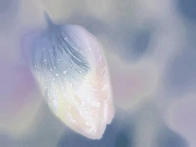Digital Art - Tulip Art Photography by Jennifer Baulch