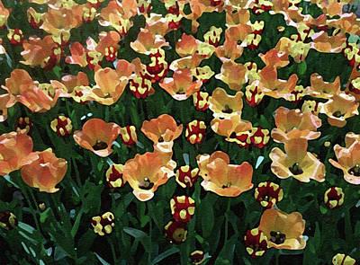 Tulip Art Print by Ralph Klein