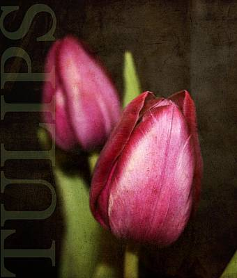 Floral Digital Art Digital Art Digital Art - Tulips by Cathie Tyler