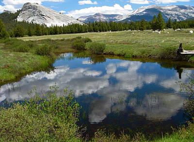 Tuolumne Meadows Art Print