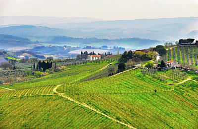 Pastoral Vineyard Photograph - Tuscany Landscape by Dutourdumonde Photography