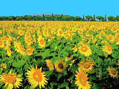 Sunflower Mixed Media - Tuscany Sunflowers by Dominic Piperata