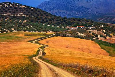 Twisty Road, Near Casabermeja, Malaga Art Print by Panoramic Images
