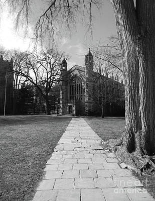 University Of Michigan Law Quad Art Print